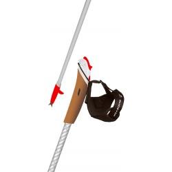 bâton marche nordique vent des fjords titanium édition